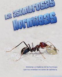 Las asombrosas hormigas