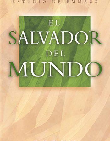 El Salvador del Mundo 1